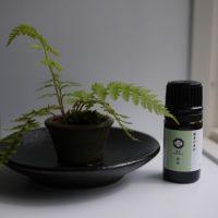 鎌倉の香油